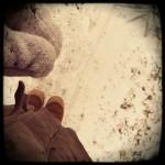 harry_snow